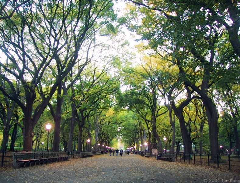 central-park-the-mall-1577-x-1200